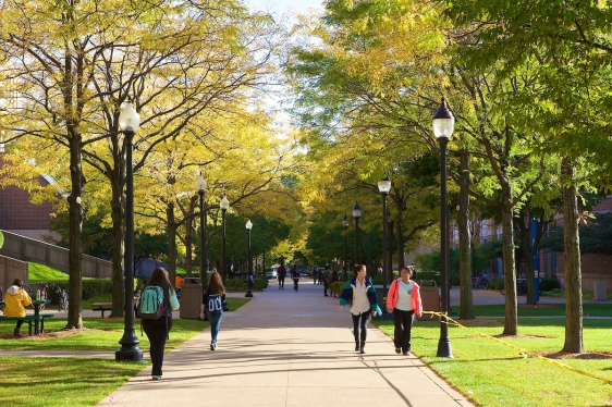 Fall Color on the Lincoln Park Quad October, 2014